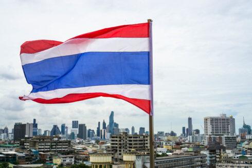 Kastration in thailand freiwillige ▷ Freiwilligenarbeit
